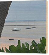 Fannie Bay 1.1 Wood Print