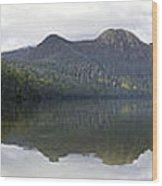 Dashi In Bliss Wood Print