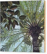 Date Palm And Rubber Tree Branch Wood Print