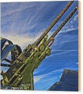 Dauntless Tail Gun Wood Print