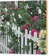David Austin Roses Chelsea Flower Show Wood Print