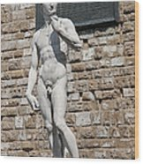 David By Michelangelo Wood Print by Melany Sarafis