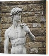 David Statue Wood Print