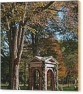 Davidson College Old Well In Autumn Wood Print
