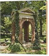 Davidson College Old Well Wood Print