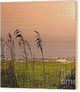 Dawn At The Lake Wood Print