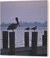 Dawn Brings Hungry Birds Wood Print