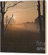 Cannock Chase Dawn Mist Wood Print