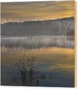 Dawns Light Wood Print