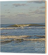 Day At The Ocean Wood Print