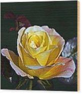 Day Breaker Rose Wood Print