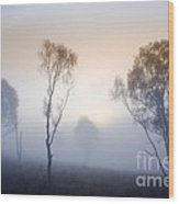 Cannock Chase Day Is Dawning Wood Print