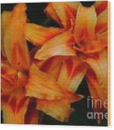 Day Lilies In Soft Focus Wood Print