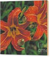 Day Lilly Wood Print