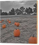 Day Of The Pumpkins Wood Print by Thomas  MacPherson Jr