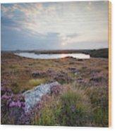 Daybreak Over Connemara Bog Wood Print
