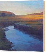 Daylight's End Wood Print by Ed Chesnovitch