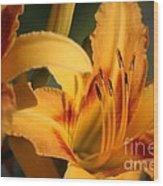 Daylillies0185 Wood Print