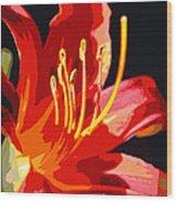 Daylily Flame Wood Print