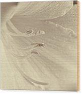 Daylily Flower Soft Brown Wood Print