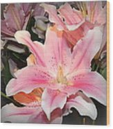 Pink Daylily In Bloom Wood Print