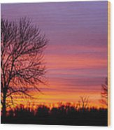 Day's End Elm Wood Print