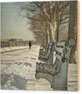 Days Of Cold Chills Wood Print