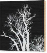 Dazmiint Wood Print