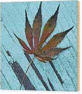 Dazzling Japanese Maple Leaf Wood Print