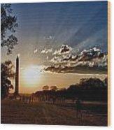 Dc Monument Sunset Wood Print