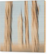 Dead Conifer Trees In Sand Dunes Wood Print