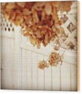 #dead #flowers #brown #focus #wtf Wood Print