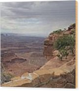 Dead Horse Point West Wood Print