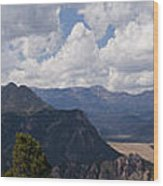 Dead Indian Panorama Wood Print