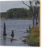 Dead Lake Wood Print