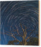 Dead Oak With Star Trails Wood Print