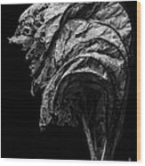 Dead Wood Print