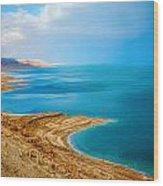 Dead Sea Wood Print