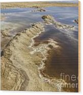 Dead Sea Landscape Wood Print