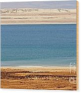 Dead Sea Shoreline In Jordan Wood Print