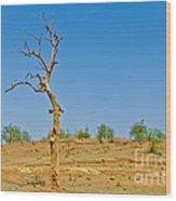 Dead Single Tree Wood Print