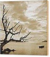 Dead Tree And Sea Wood Print