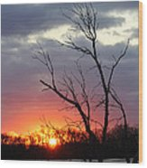 Dead Tree At Sunset Wood Print