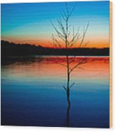 Dead Tree Beauty At Sunset Over Table Rock Lake Wood Print