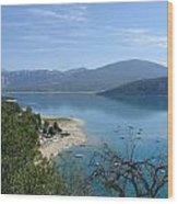 Dead Tree  Blue Ocean Wood Print