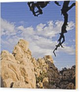 Dead Tree Limb Hanging Over Rocky Landscape In The Mojave Desert Wood Print