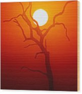 Dead Tree Silhouette And Glowing Sun Wood Print
