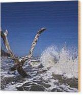 Dead Tree Splash Wood Print