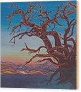 Still Life Wood Print