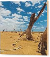 Dead Trees In A Desert Wasteland Wood Print